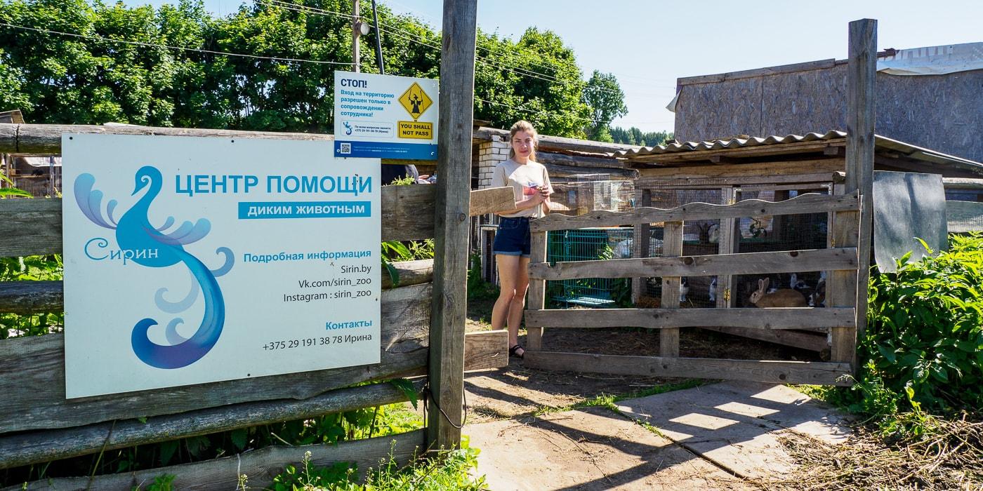 На грани закрытия единственный в Беларуси центр помощи диким животным