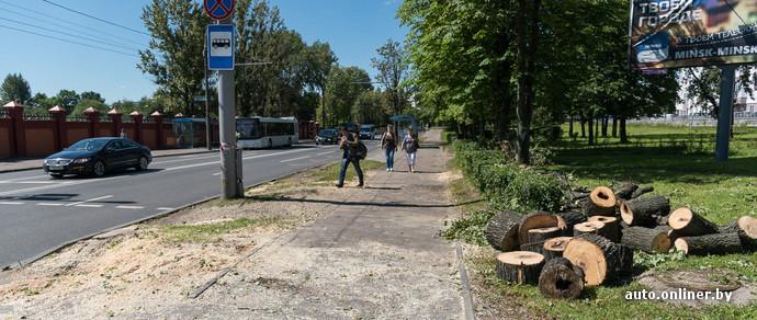 Только после ДТП, в котором погибла 15-летняя велосипедистка, на перекрестке спилили деревья, мешающие обзору