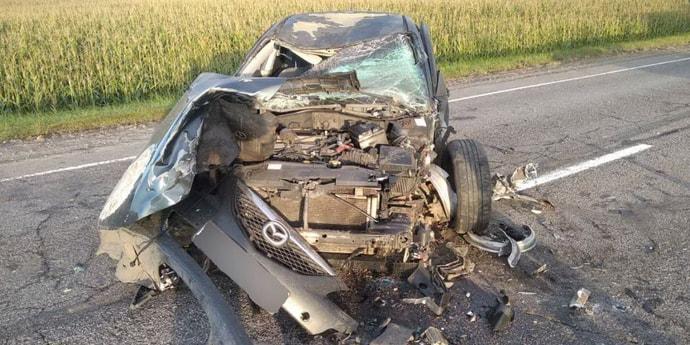 В Гомельской области Mazda6 совершила наезд на лося. Пострадал пассажир