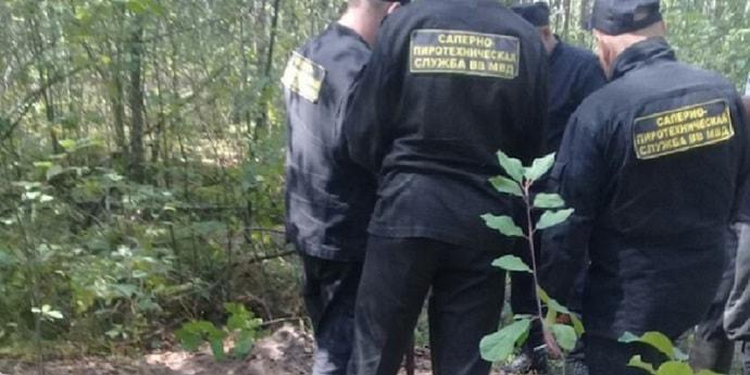 Житель Столина пошел в лес и вместо грибов нашел элементы ракеты и авиабомбы