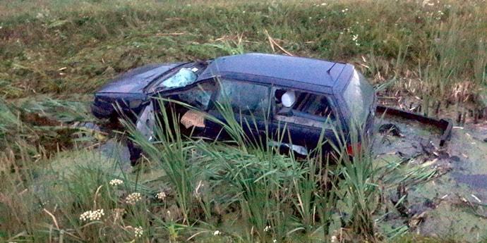 Volkswagen сбил лося на брестской трассе, водитель с тяжелыми травмами госпитализирован