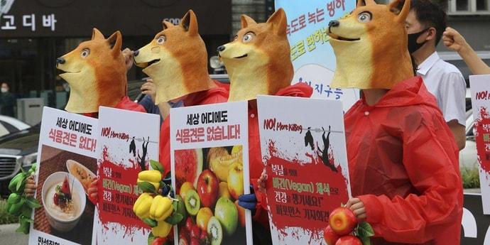 Президент Южной Кореи предложил ввести запрет на приготовление блюд из собачьего мяса