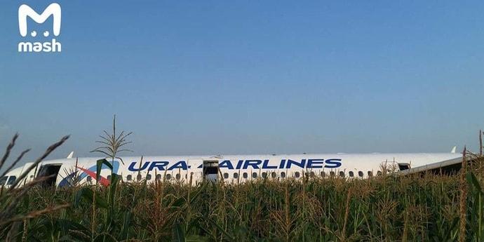 После вылета из Жуковского российский самолет совершил жесткую посадку — в двигатели попала стая птиц