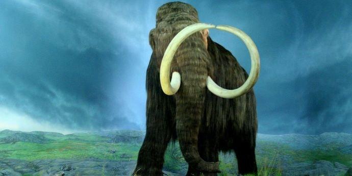 В США решили «воскресить» древних мамонтов. На проект уже собрали $15 миллионов
