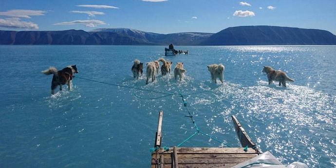 Грустный рекорд в Гренландии: там растаяло 12,5 миллиарда тонн льда за день