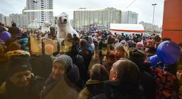 Фоторепортаж: сотни минчан пришли на открытие гипермаркета «Евроопт» в Каменной Горке