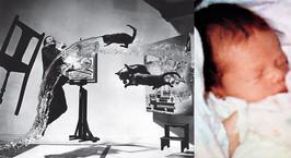 Сюрреализм, кошки и первый в мире камерофон. История знаменитых фото